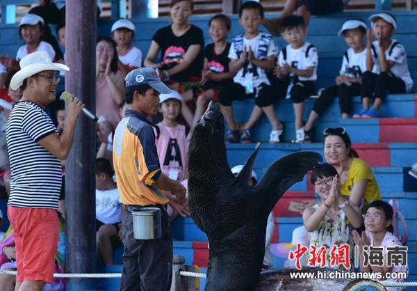 海狮与小游客们近距离互动