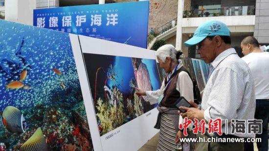 市民和游客观展。